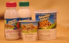 Dolomiten Joghurt aus Heumilch - Despar Pircher